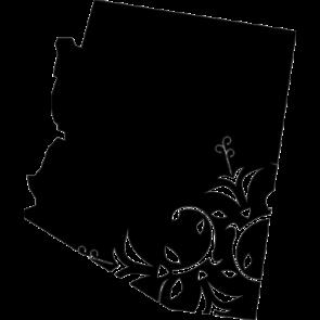 Arizona Home Tshirt