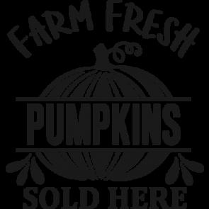 Farm Fresh Pumpkins Sold Here