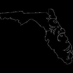 Florida Home Tshirt