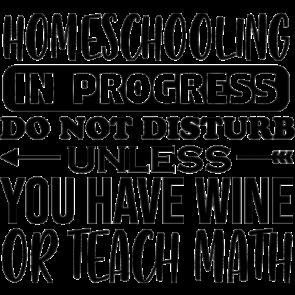Home Schooling In Progress
