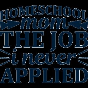 Homeschool Mom The Job I Never Applied