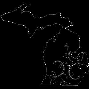 Michigan Home Tshirt