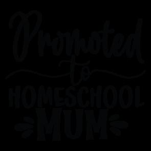 Promoted To Homeschool Mum 01
