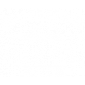 Summer Road Trip Wh